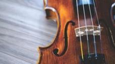 Art of Playing Violin - Hindustani Classical - Level 2 By Sharart Chandra Srivatava